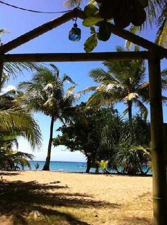 Bermuda Beach Resort: depuis la terrasse