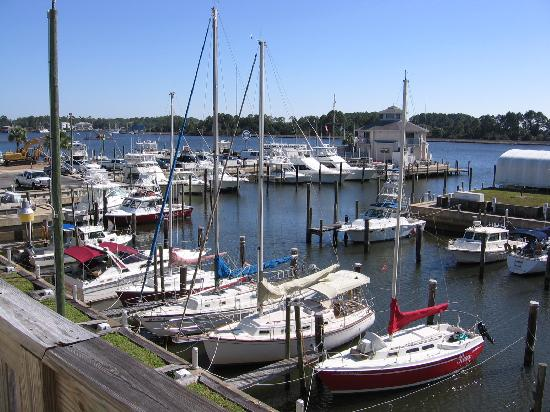 The Moorings at Carrabelle: View from our room.