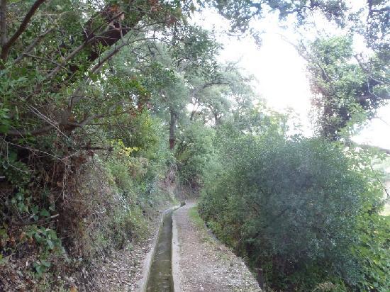 هوتل لوس جاراليس: Otro camino hacia el pueblo