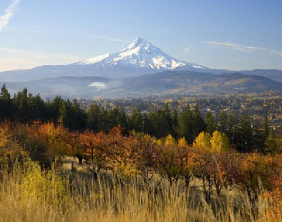 Hood River, OR: Mt Hood in fall photo by Michael Peterson
