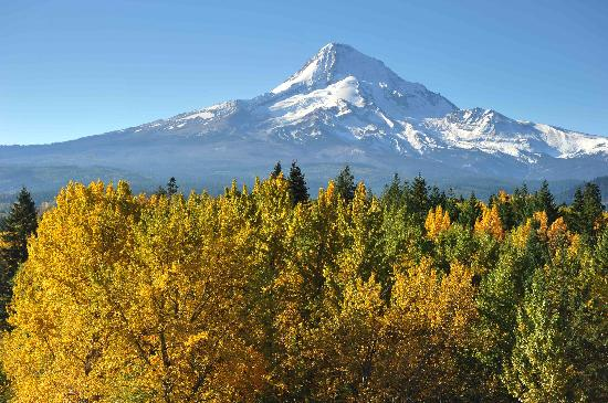 Mount Hood and fall colors Hood River Valley Peter Marbach 2011