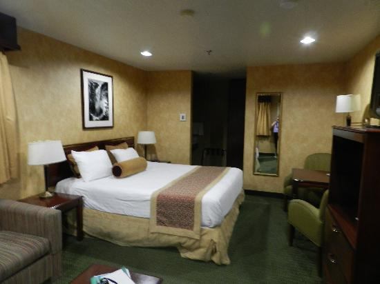 BEST WESTERN PLUS Yosemite Way Station Motel: Was happy to see a great room after a long day of travel!