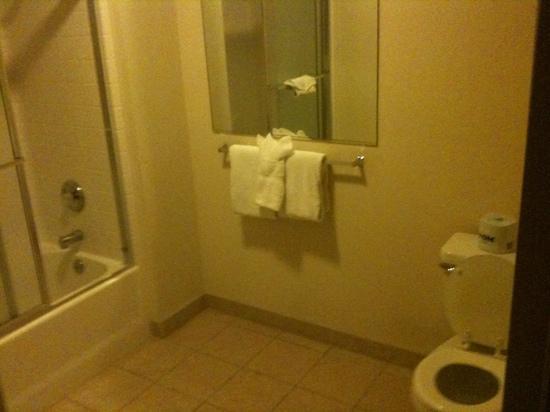 Vintage Lakeside Inn : bathroom