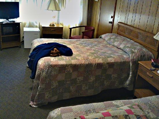 Marshall's Creek Rest Motel: Room shot after arrived (2 beds)