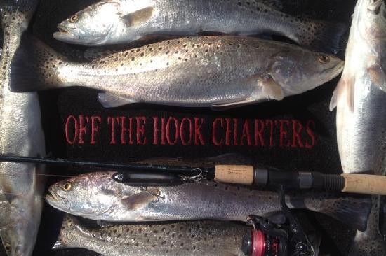 Trout yum picture of off the hook fishing charters for Off the hook fishing charters