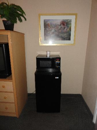 Harbor Inn & Suites Oceanside / San Diego: Microfridge and microwave