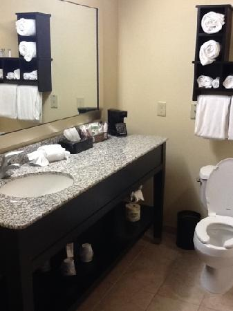 Hampton Inn and Suites Toledo-North: bathroom