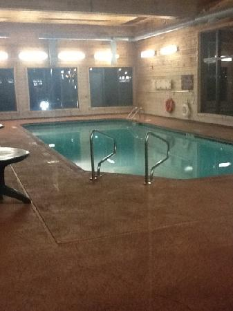 Hampton Inn and Suites Toledo-North: hotel pool