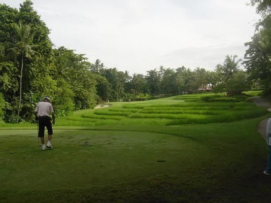 Nirwana Bali Golf Club: 田んぼ越えのホール