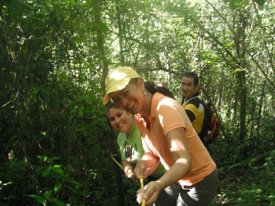 Atabey Eco Adventures : Ready to hike down