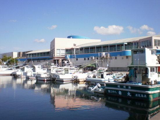 Makurazaki, Japan: 枕崎お魚センター外観