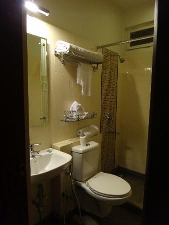 Hotel Devi Ram Palace: el baño, interruptor de fuera para agua caliente
