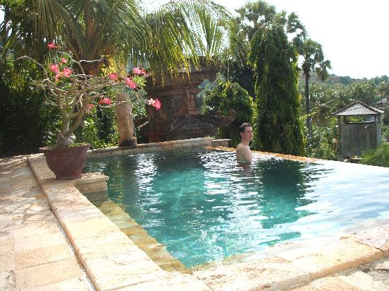 Bayu Cottages Hotel and Restaurant: The pool