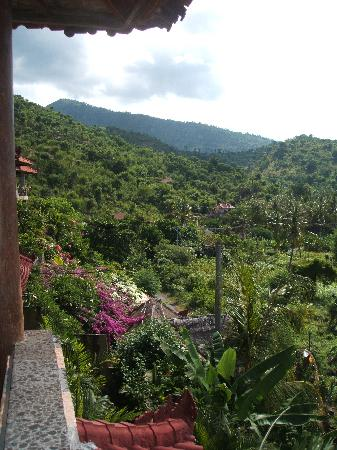 Bayu Cottages Hotel and Restaurant : View from the room