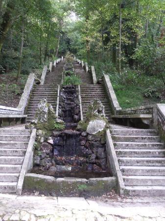 Palace of Bussaco: Grande cascade de la Mata (forêt) de Buçaco