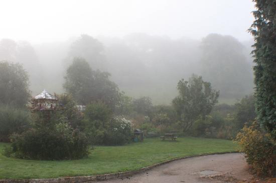 Misty morning in August at Killagorden Cottage