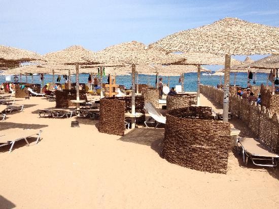 Sensimar Makadi Hotel: Hotel-Strand