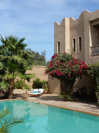 Dar Tourkia: garden/pool