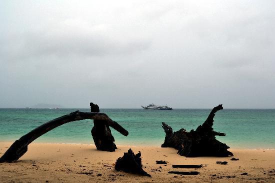 Phi Phi Islands: Beach