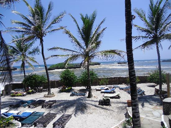 Aquarius Club: La spiaggia