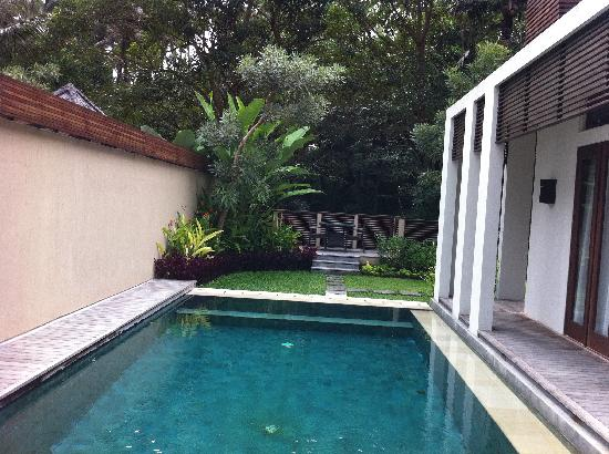 The Samaya Bali Ubud: Swimming Pool