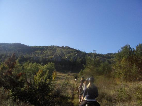 Brezilhou Riding Stables: Plateau