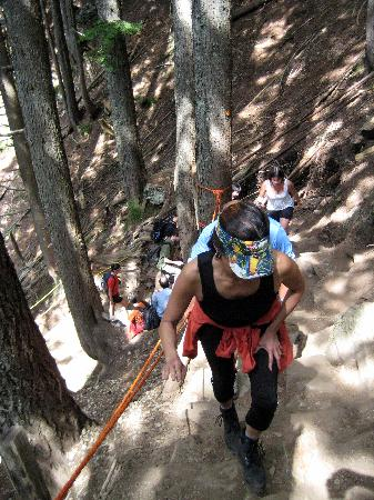 The Grouse Grind: Steep and strenuous, only partly groomed