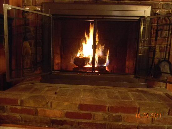 Timberwolf Creek Bed & Breakfast: fireplace