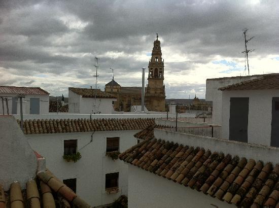 Hospederia del Atalia: vistas desde la terraza del hotel