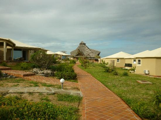 Ora Resort Watamu Bay: dintorni