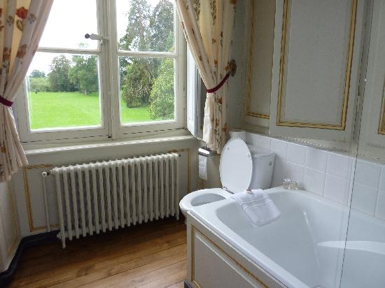 Chateau de Bouceel: bathroom with a view