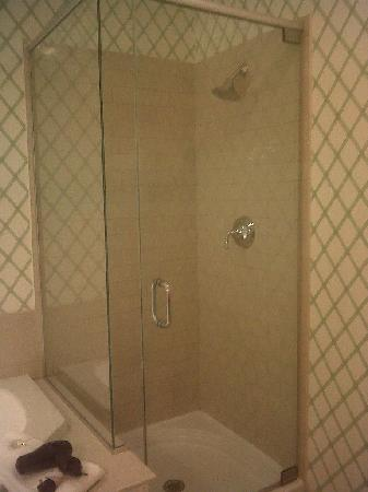 Lake Opechee Inn and Spa : Shower