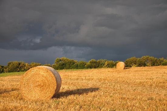 Agriturismo Il Forasacco: Paesaggio
