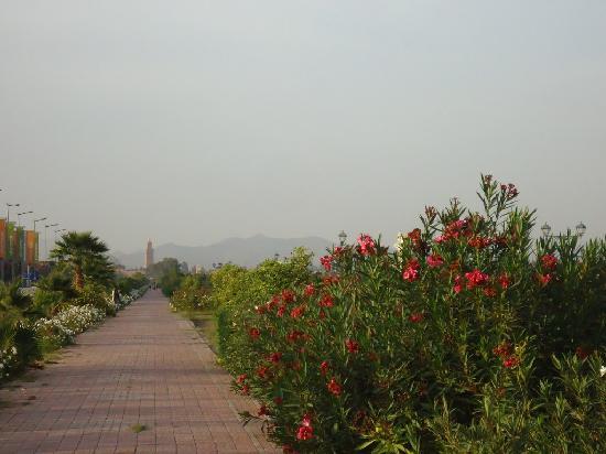 Al Fassia Aguedal: Route de l'Ourika adiacente al riad. 25-30 minuti a piedi (5-10 minuti di taxi) e si arriva alla