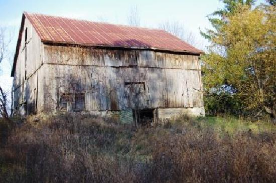Natural Happiness Guide Tours: Hidden Barn