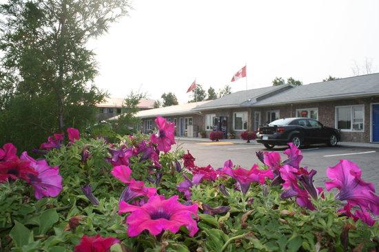 Moonlight Inn And Suites Sudbury: Moonlight Inn Motel Sudbury