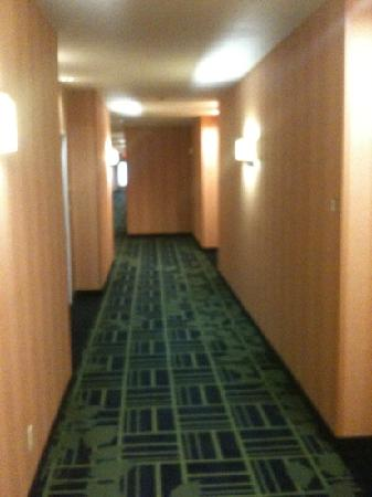 Fairfield Inn & Suites San Antonio Boerne: hall