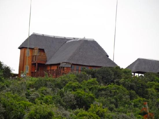Addo Afrique Estate: Die Lodge