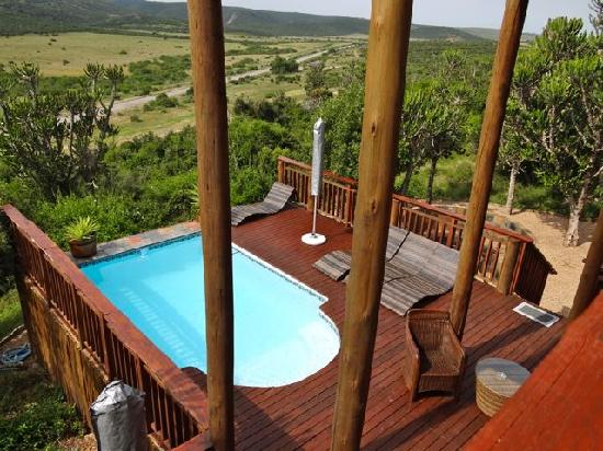 Addo Afrique Estate: der Pool