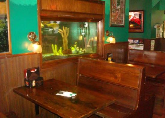 Elmhurst Public House: have the kids come look at the fish