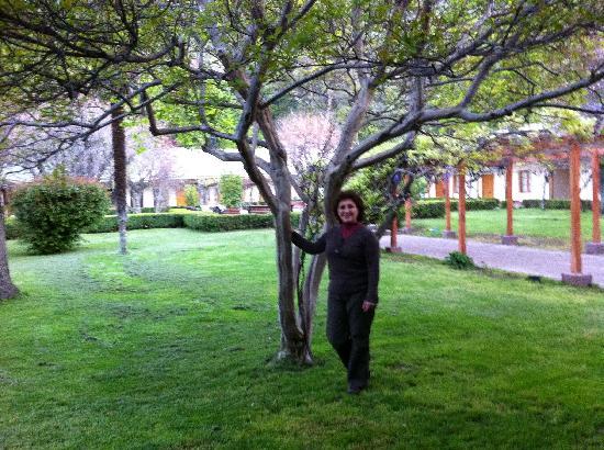 Termas de Cauquenes: Jardín interior