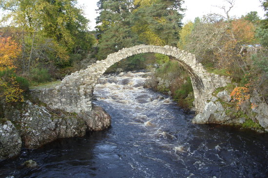 Carrbridge, UK: The view over the road