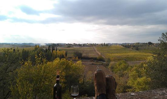 La Gazzara B&B: view from the back patio