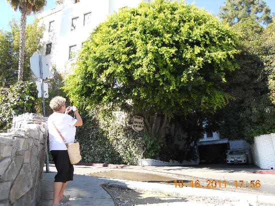 Chateau Marmont : The almost hidden entrance .....