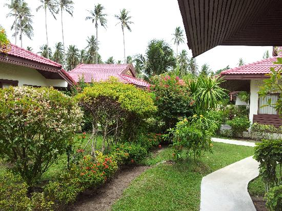 Viva Vacation Resort: schöner & gepflegter Garten