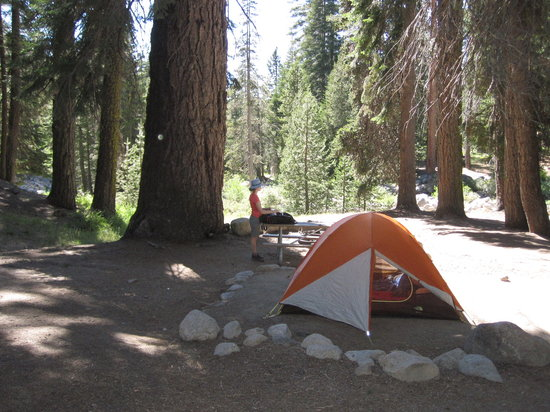 Lodgepole Campground: Setting up