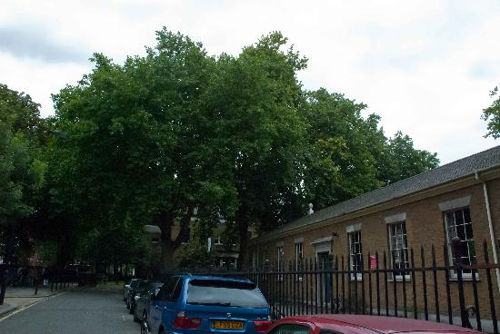 Paddington Green and St. Mary's Churchyard: Paddington Green in London
