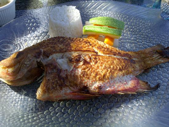 Grand Fiesta Americana Coral Beach Cancun: fresh fish for lunch at Isla Contoy