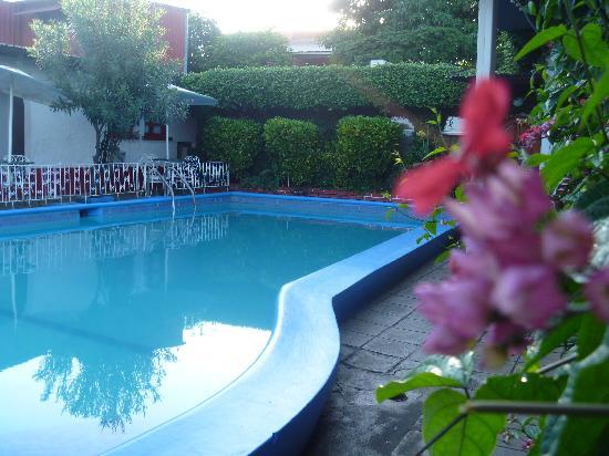 Hotel D'Lido: Piscina