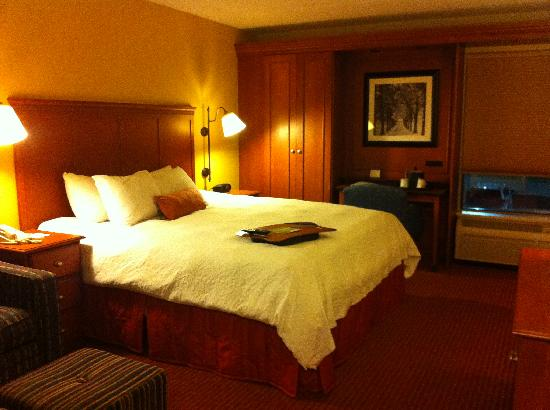 Hampton Inn Louisville Airport: king bedroom